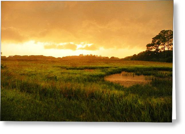 Storm Prints Digital Art Greeting Cards - Sailors Delight Greeting Card by Sheri McLeroy