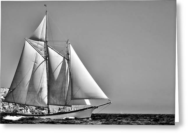 Sailboat Ocean Greeting Cards - Sailrace in open sea - vintage vessel of two mast - pedro cardona Greeting Card by Pedro Cardona