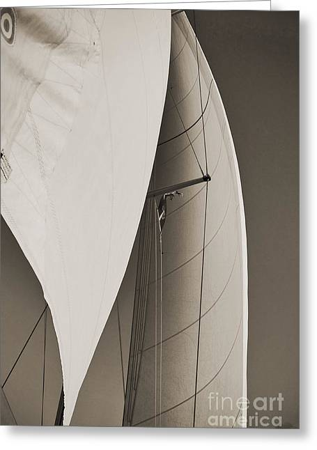 Billowing Greeting Cards - Sails Greeting Card by Dustin K Ryan