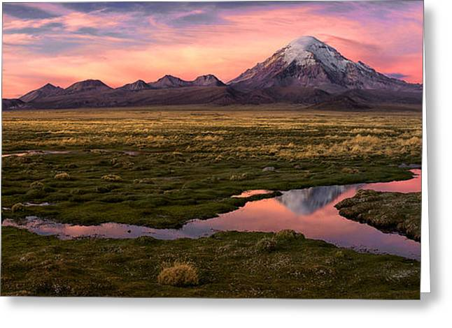 Sajama Greeting Card by Margarita Chernilova
