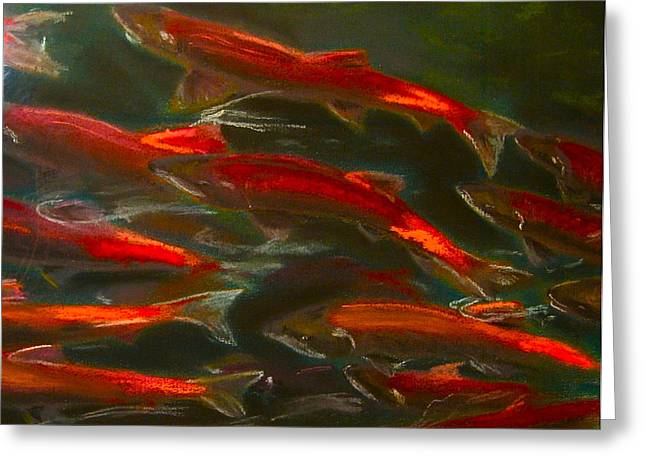 Salmon Paintings Greeting Cards - Salmon Heading Upstream Greeting Card by Christina Olds