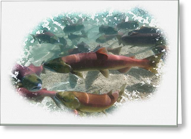 Tress Framed Prints Greeting Cards - Salmon migration Greeting Card by Don Kuing