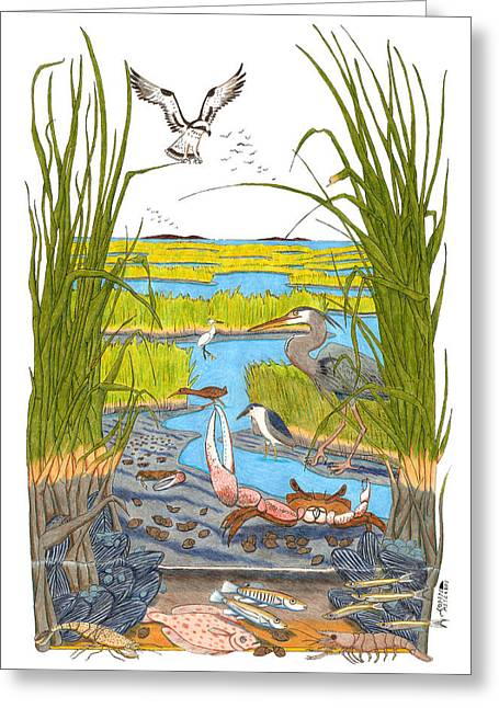 Atlantic Beaches Drawings Greeting Cards - Salt Marsh Greeting Card by John Meszaros