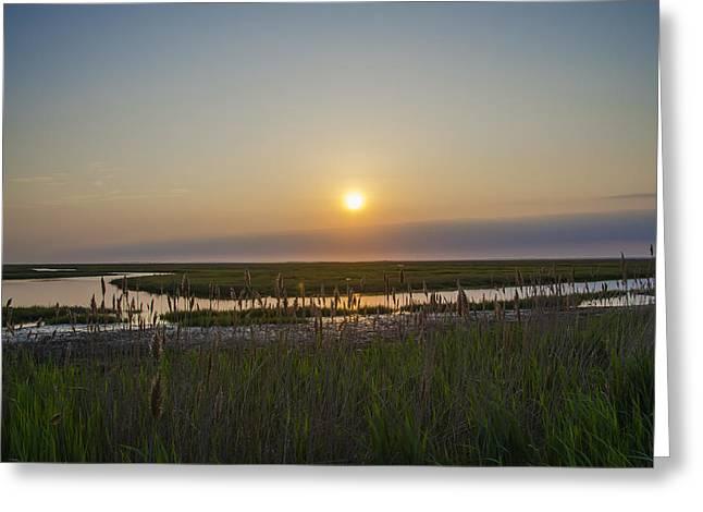 Salt Marsh Greeting Cards - Salt Marsh Sunrise - Stone Harbor New Jersey Greeting Card by Bill Cannon