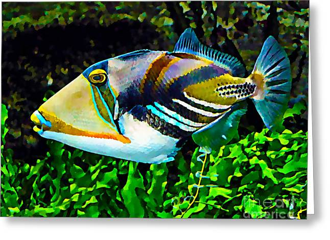 Saltwater Triggerfish Greeting Card by Marvin Blaine