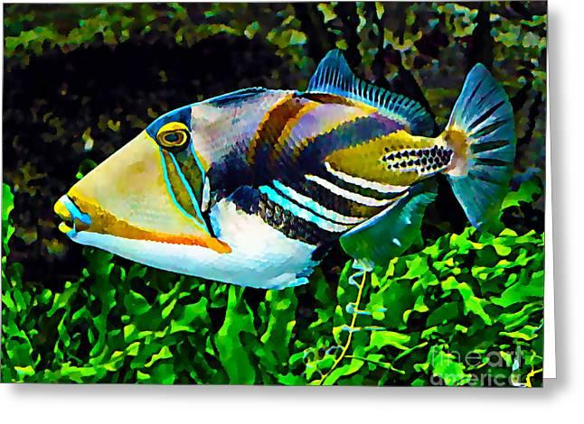 Water Triggerfish Print Greeting Cards - Saltwater Triggerfish Greeting Card by Marvin Blaine