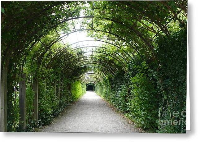 Salzburg Garden Arbor Greeting Card by Carol Groenen