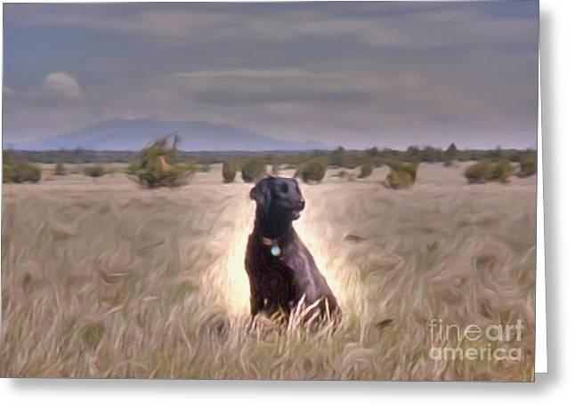 Dogs Digital Greeting Cards - Samone Greeting Card by Richard Jones