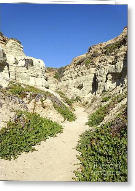 Clemente Greeting Cards - San Clemente Beach Cliffs Greeting Card by Carrie V