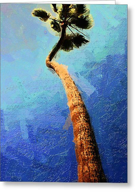 San Clemente Surfing Greeting Cards - San Clemente Beach Palm Greeting Card by Ron Regalado