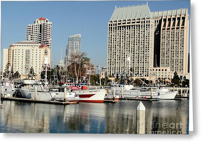 Boats In Harbor Greeting Cards - San Diego Marina - California Greeting Card by TN Fairey