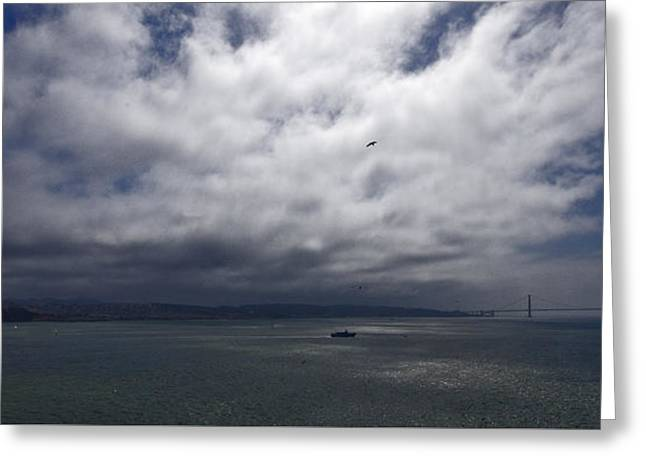 San Francisco Bay Greeting Cards - San Francisco Bay - 1 Greeting Card by Richard Krigstein