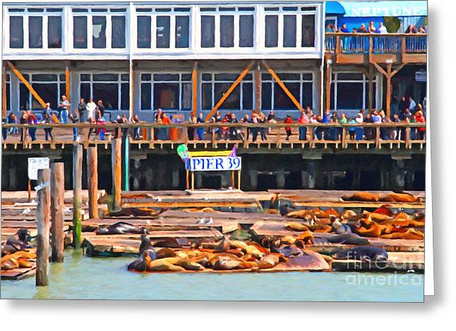 Best Sellers -  - Elephant Seals Greeting Cards - San Francisco Pier 39 Sea Lions . 7D14272 Greeting Card by Wingsdomain Art and Photography