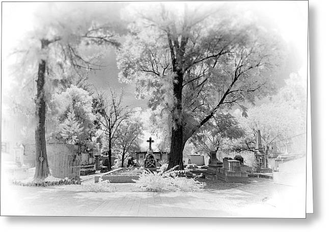 San Jose De Dios Cemetery Greeting Card by Sean Foster