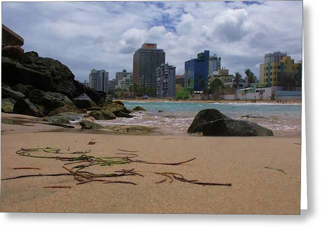 San Juan Beach IV Greeting Card by Anna Villarreal Garbis