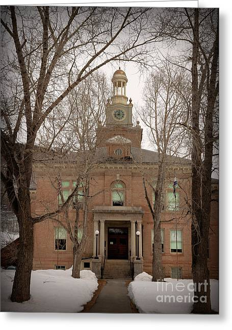 Wishes Greeting Cards - San Juan County Courthouse Greeting Card by Janice Rae Pariza