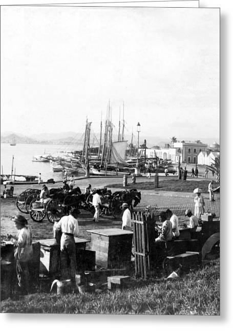 Puerto Rican Greeting Cards - San Juan Harbor - Puerto Rico - c 1900 Greeting Card by International  Images