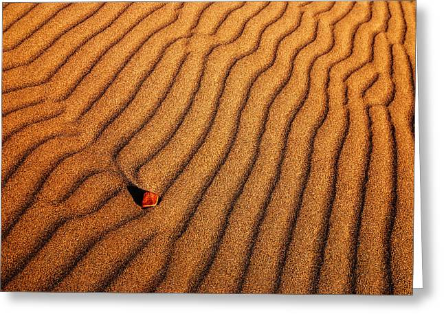Sand Patterns Photographs Greeting Cards - Sand and a pebble Greeting Card by Vishwanath Bhat