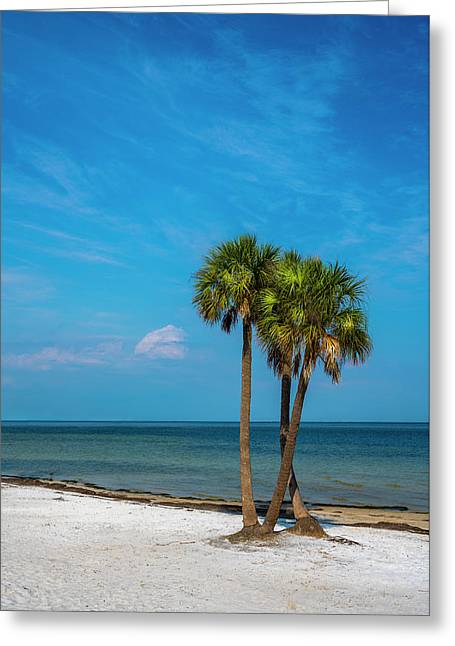 Sand And Palms Greeting Card by Marvin Spates