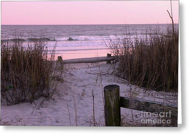 Sea Oats Greeting Cards - Sand and Sea Greeting Card by Al Powell Photography USA