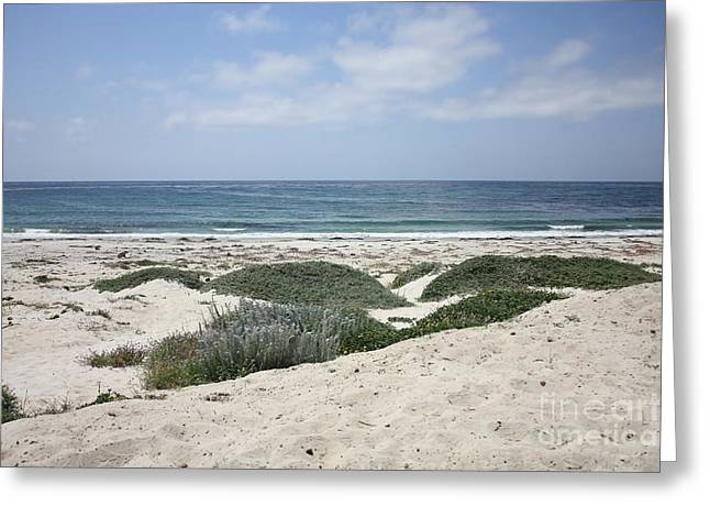 California Beach Greeting Cards - Sand and Sea Greeting Card by Carol Groenen