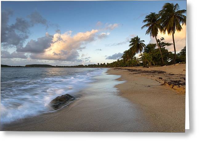 Tropical Oceans Greeting Cards - Sand and Sea Greeting Card by Patrick Downey