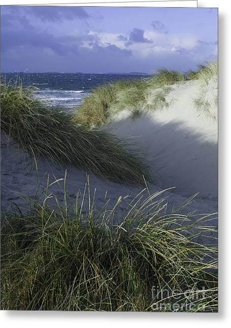 Sand And Sky Greeting Card by Gunnar Braaten