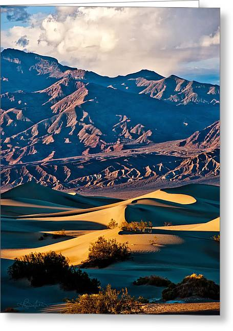 Sand Pattern Greeting Cards - Sand and Stone Greeting Card by Renee Sullivan