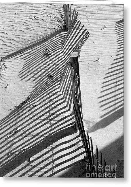 Sand Fences Photographs Greeting Cards - Sand and Sun Greeting Card by Robert Meanor