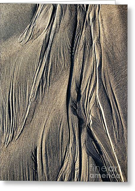 Sand Angel Greeting Card by Tim Gainey