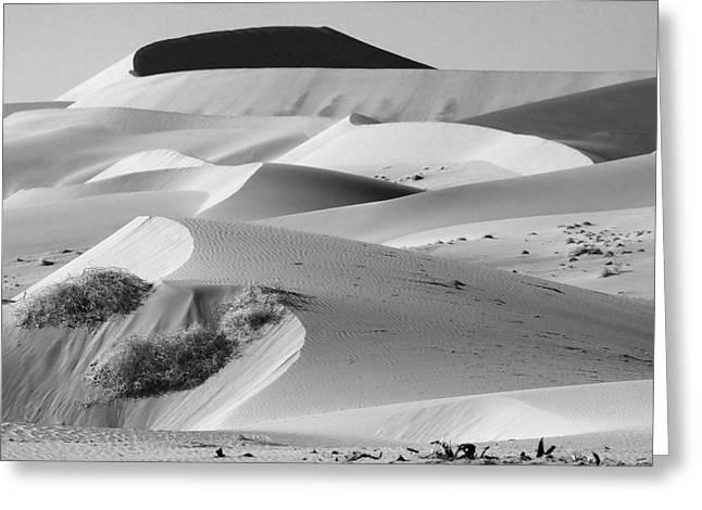 Moran Greeting Cards - Sand Dune Sculptures - Namibia Greeting Card by Aidan Moran