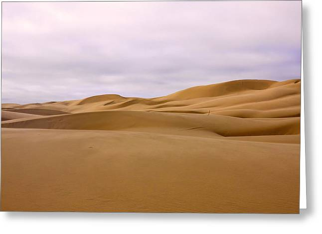 Sand Dunes At Sunset Greeting Card by Chris Smith