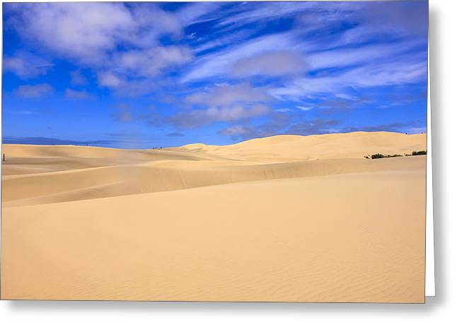 Sand Dunes Of Oregon Greeting Card by Chris Smith