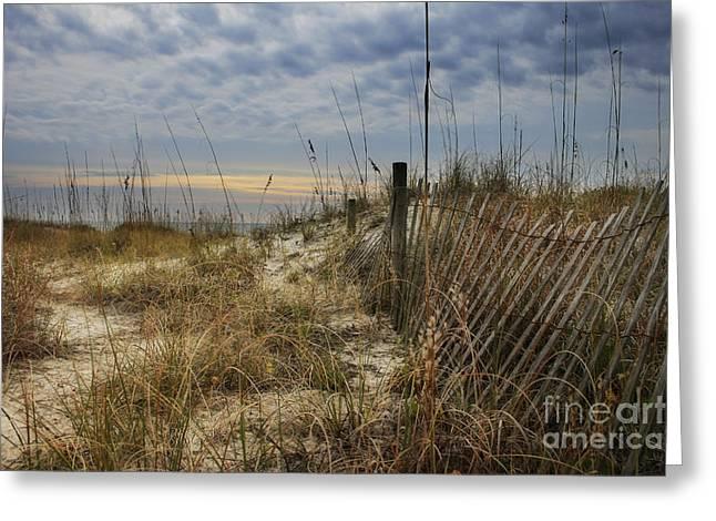 Sand Fence Greeting Card by Sari Sauls