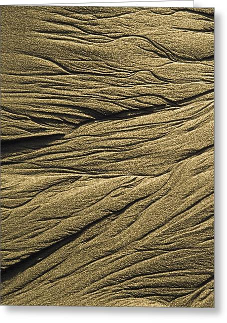 Big Sur Beach Greeting Cards - Sand Pattern At Low Tide On Sand Dollar Greeting Card by Rich Reid