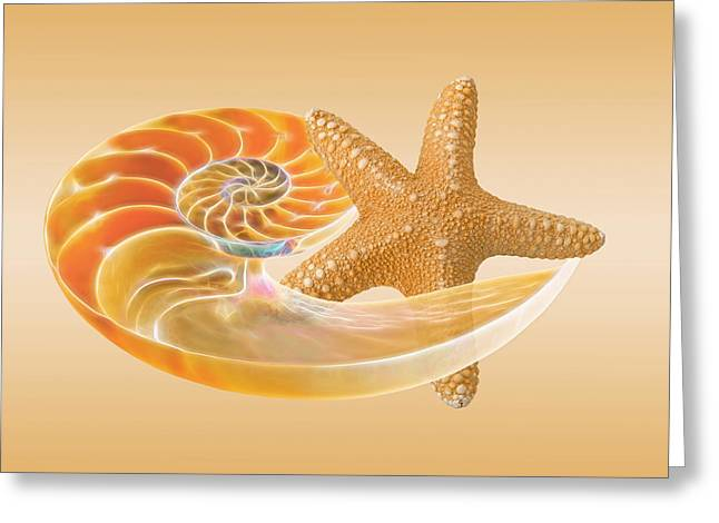 Star Fish Greeting Cards - Sand Treasure Greeting Card by Gill Billington