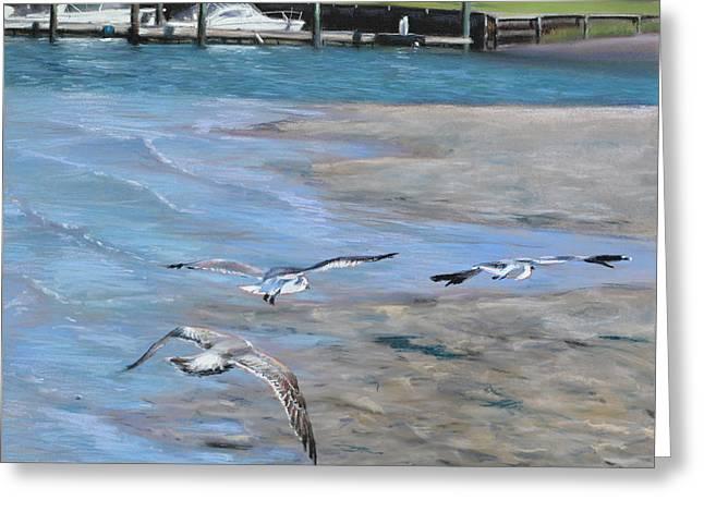 Beach Greeting Cards - Sandbar Skimming Seagulls Greeting Card by Christopher Reid