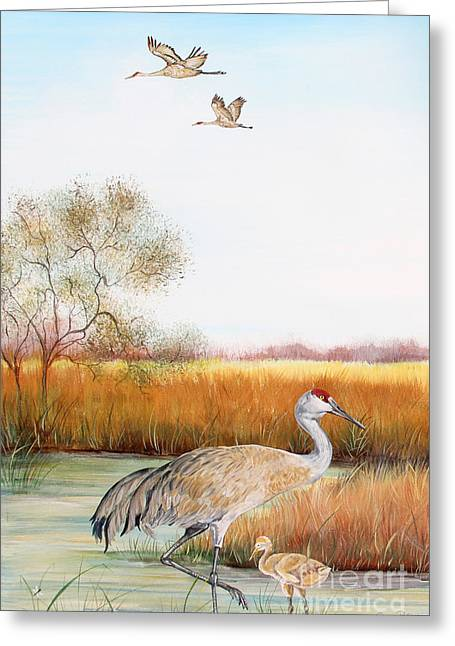 Willow Lake Greeting Cards - Sandhill Cranes-JP3160 Greeting Card by Jean Plout