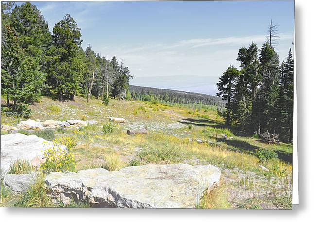 Sandias Greeting Cards - Sandia Mountain Meadow Greeting Card by Andrea Hazel Ihlefeld