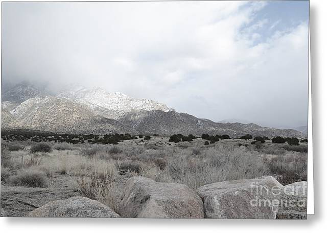 Sandias Greeting Cards - Sandia Mountains Wilderness Greeting Card by Andrea Hazel Ihlefeld