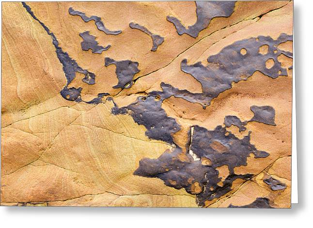 Geology Photographs Greeting Cards - Sandstone Erosion  Greeting Card by Tim Gainey