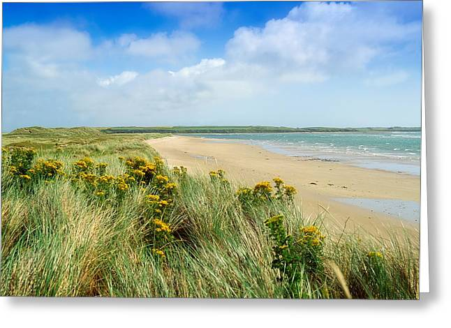 Recently Sold -  - Sanddunes Greeting Cards - Sandunes At Fethard, Co Wexford, Ireland Greeting Card by The Irish Image Collection