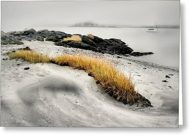 Westchester County Greeting Cards - Between Surf and Sand Greeting Card by Diana Angstadt