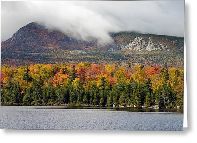 Baxter Park Greeting Cards - Sandy Stream Pond in Baxter State Park Maine Autumn Greeting Card by Brendan Reals
