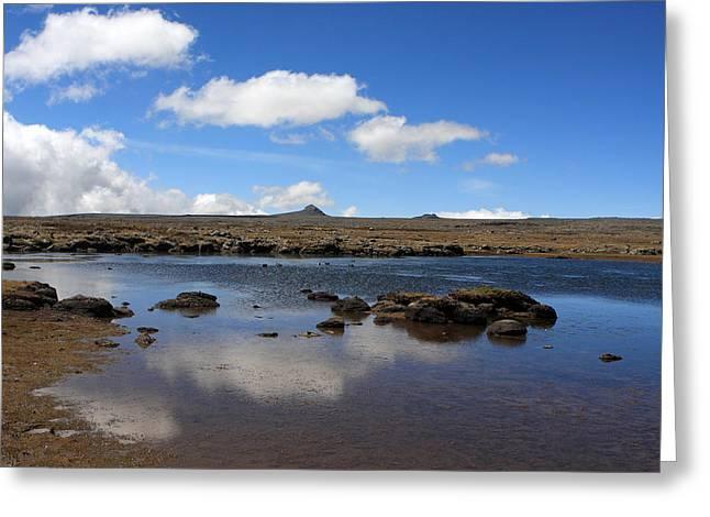 Sanetti Plateau, Bale Mountain National Park Greeting Card by Aidan Moran