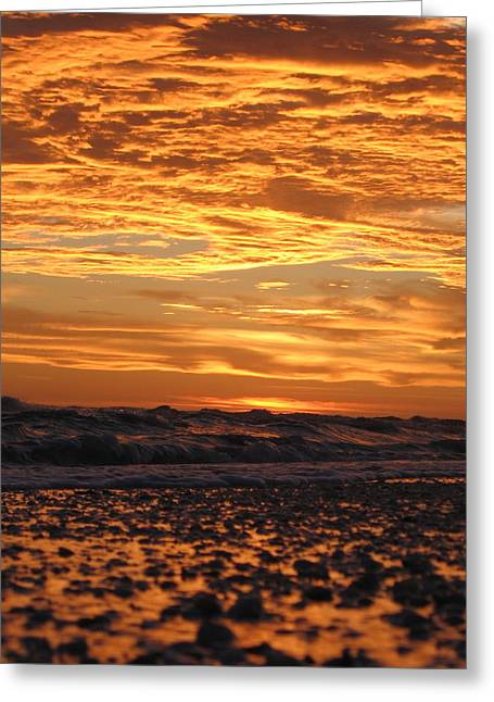 Sanibel Island Greeting Card by Nick Flavin