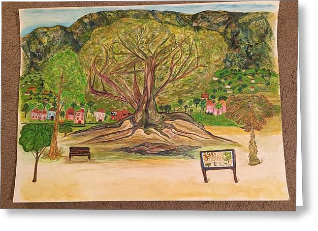 Santa Barbara Fig Tree Greeting Card by Debra Dimick