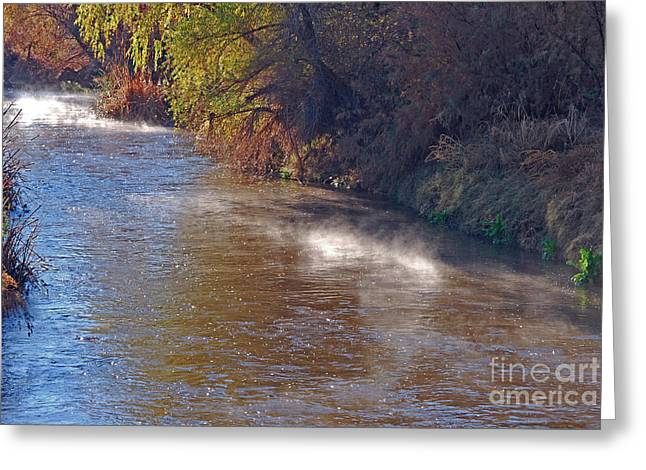 Santa Cruz Art Greeting Cards - Santa Cruz River - Arizona Greeting Card by Donna Van Vlack