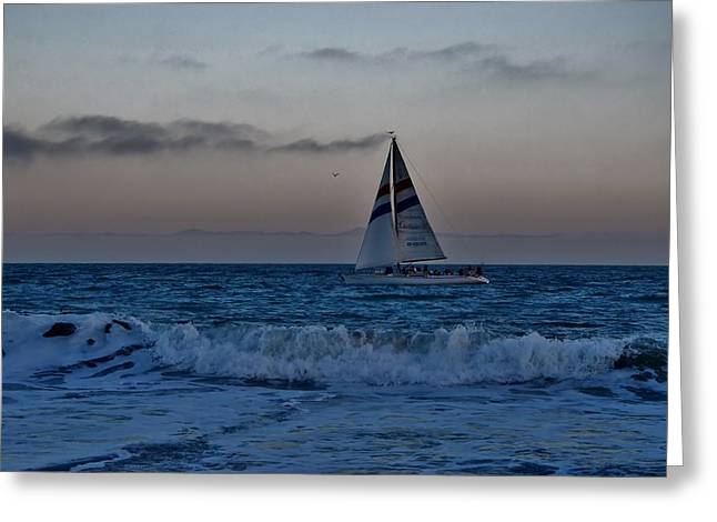 Santa Cruz Sailboat Greeting Cards - Santa Cruz Sail Greeting Card by Marilyn MacCrakin