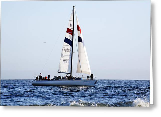 Santa Cruz Sailboat Greeting Cards - Santa Cruz Sailing Greeting Card by Marilyn Hunt
